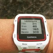 Løpsanalyse