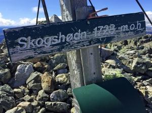 Nådde Skogshorn på 1728 moh